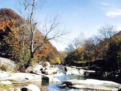 五龙山风景区地处张家川回族自治县马鹿乡和寺湾村之间,占地约18.